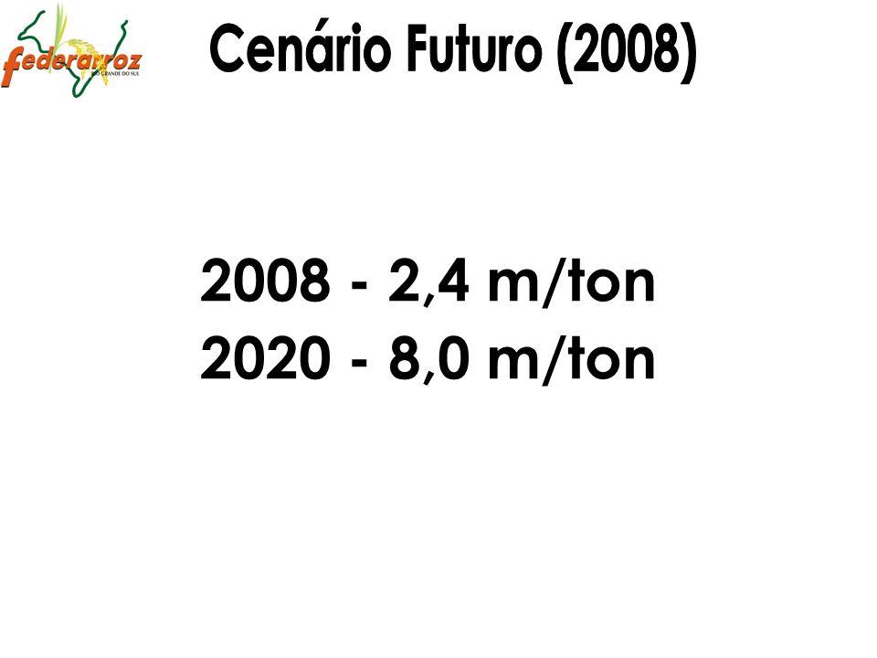 Cenário Futuro (2008) 2008 - 2,4 m/ton 2020 - 8,0 m/ton 31 31