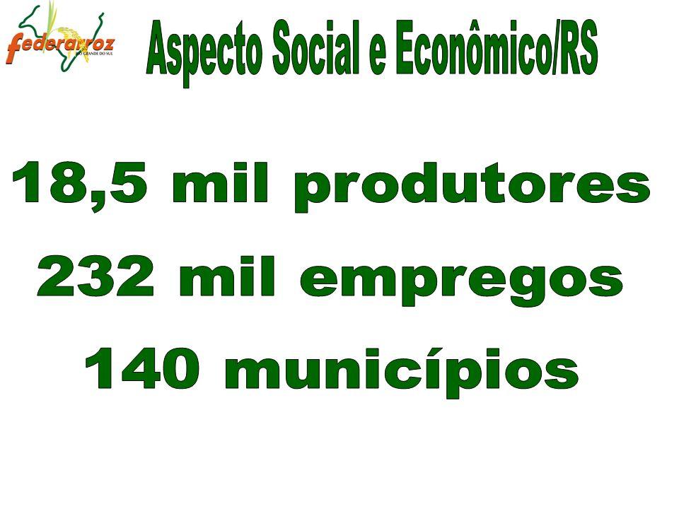 Aspecto Social e Econômico/RS