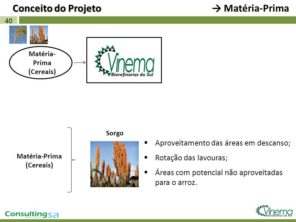 Conceito do Projeto → Matéria-Prima