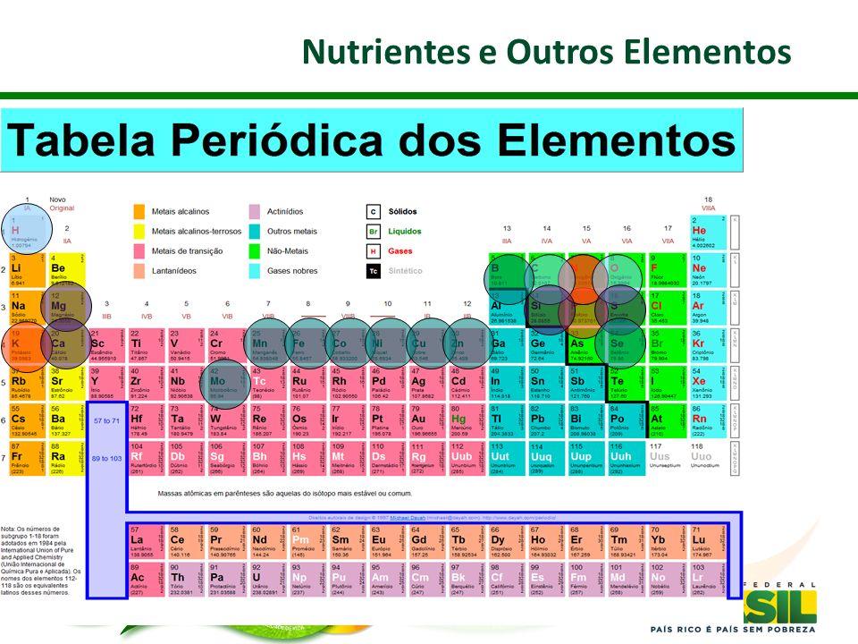 Nutrientes e Outros Elementos