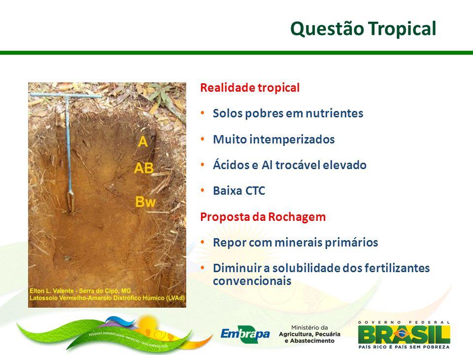Questão Tropical Realidade tropical Solos pobres em nutrientes