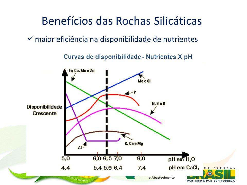 Benefícios das Rochas Silicáticas