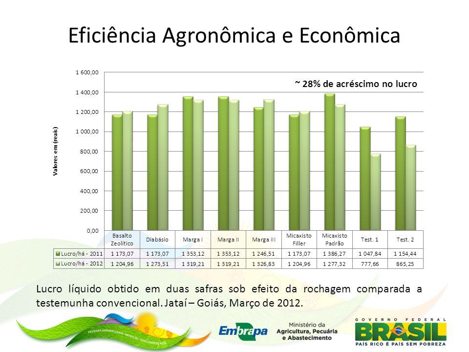 Eficiência Agronômica e Econômica
