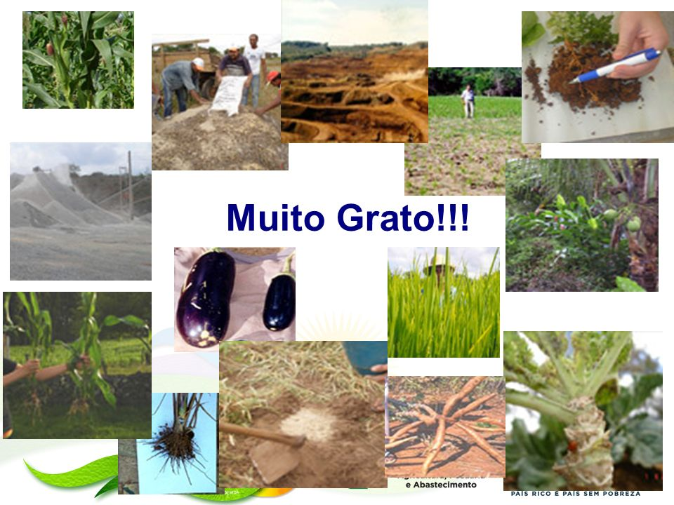 Muito Grato!!!