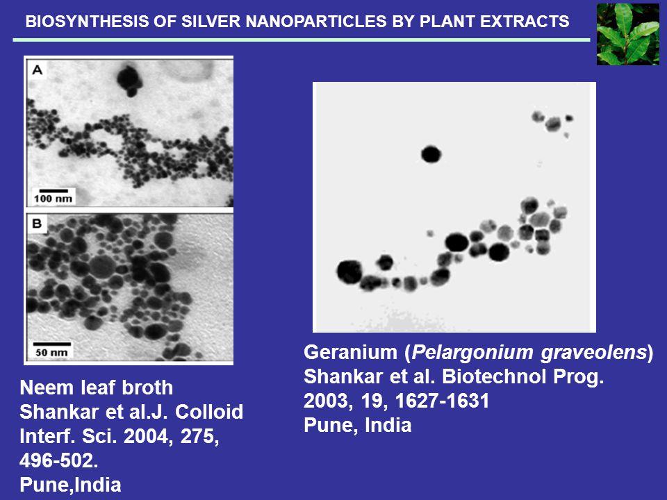 Geranium (Pelargonium graveolens) Shankar et al. Biotechnol Prog.