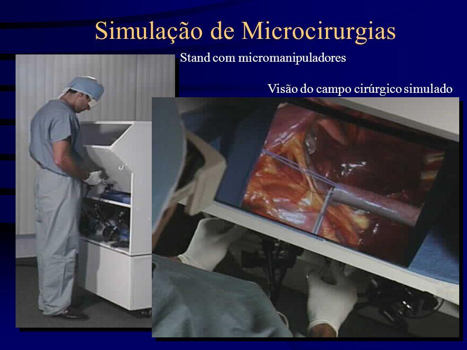 Simulação de Microcirurgias