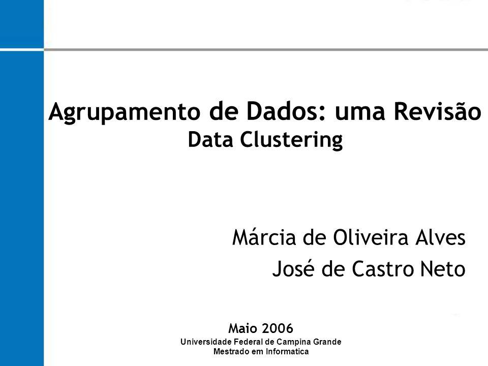 Agrupamento de Dados: uma Revisão Data Clustering
