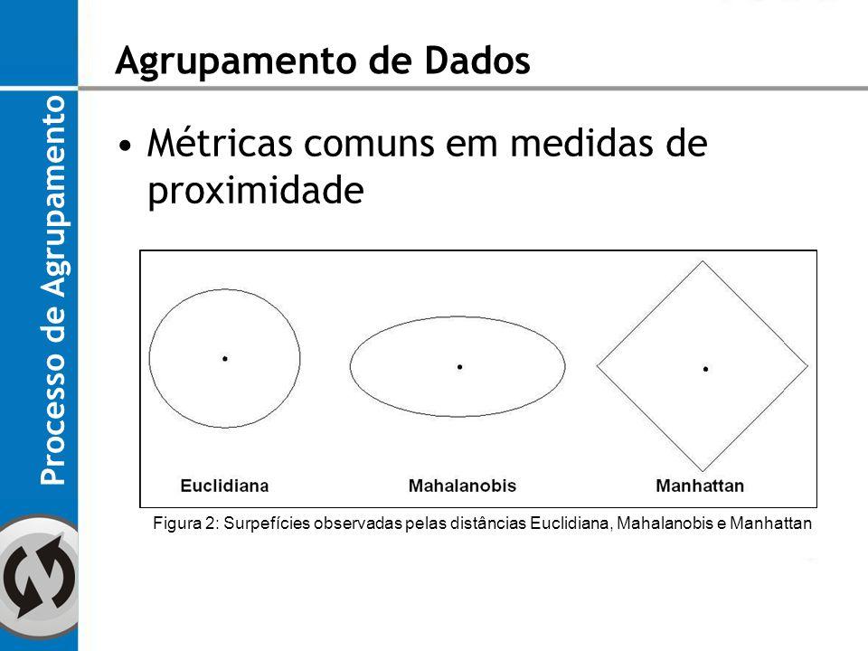 Métricas comuns em medidas de proximidade