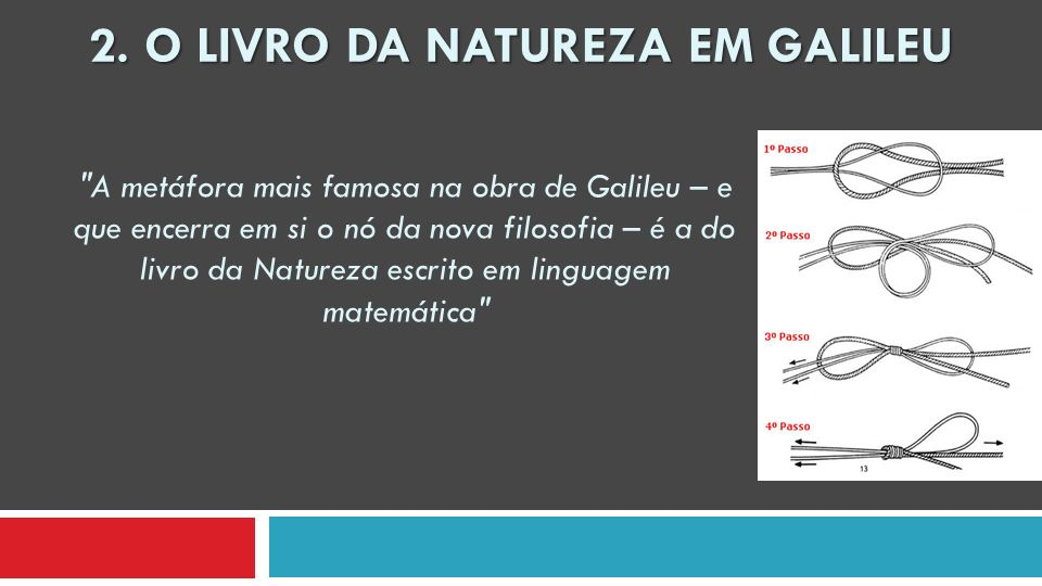 2. O Livro da Natureza EM Galileu
