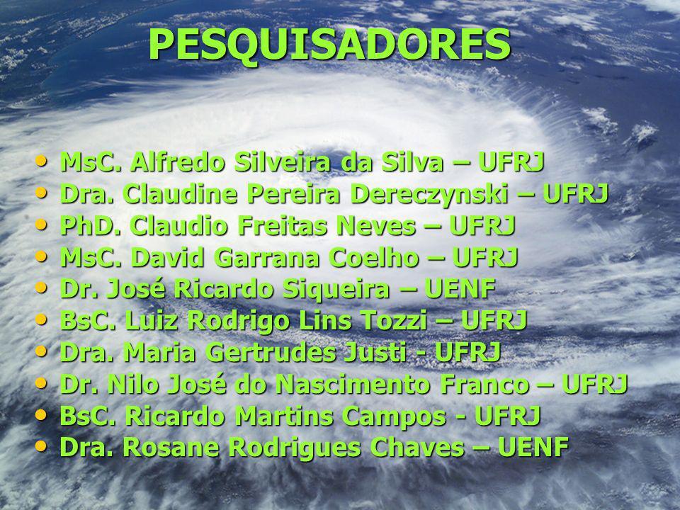 PESQUISADORES MsC. Alfredo Silveira da Silva – UFRJ