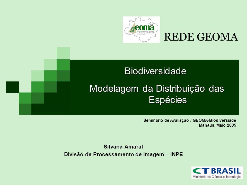 Silvana Amaral Divisão de Processamento de Imagem – INPE