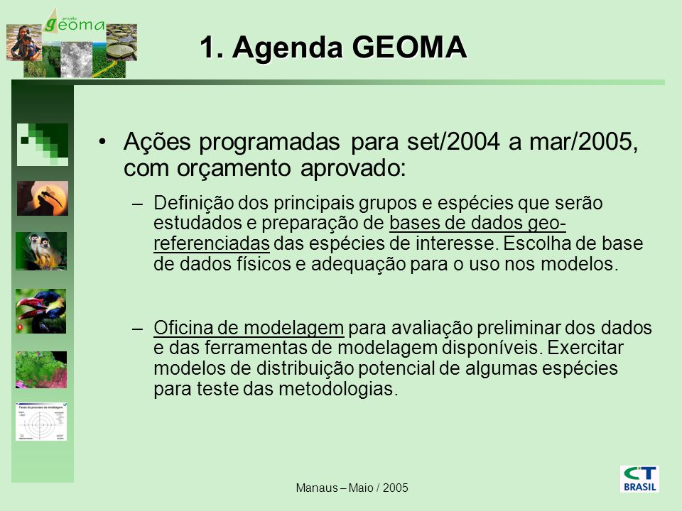 1. Agenda GEOMA Ações programadas para set/2004 a mar/2005, com orçamento aprovado: