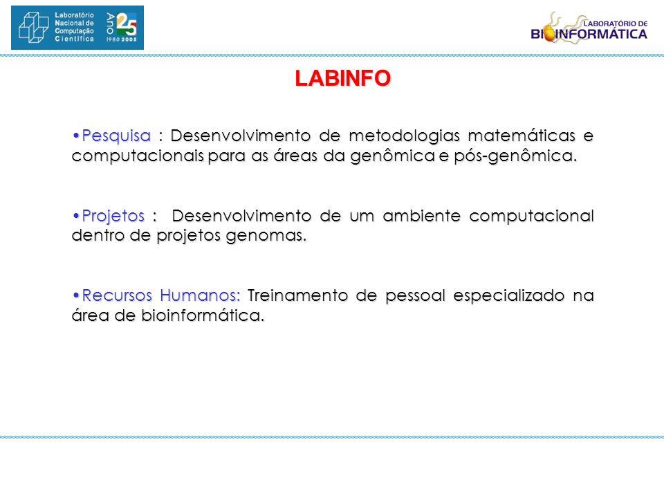 LABINFO Pesquisa : Desenvolvimento de metodologias matemáticas e computacionais para as áreas da genômica e pós-genômica.