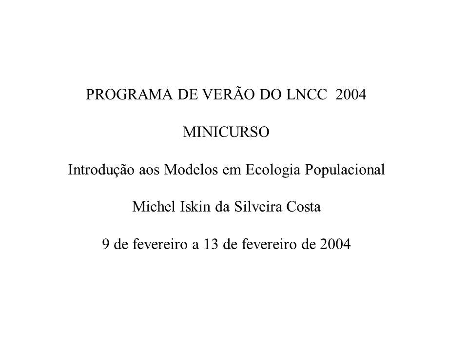 PROGRAMA DE VERÃO DO LNCC 2004 MINICURSO