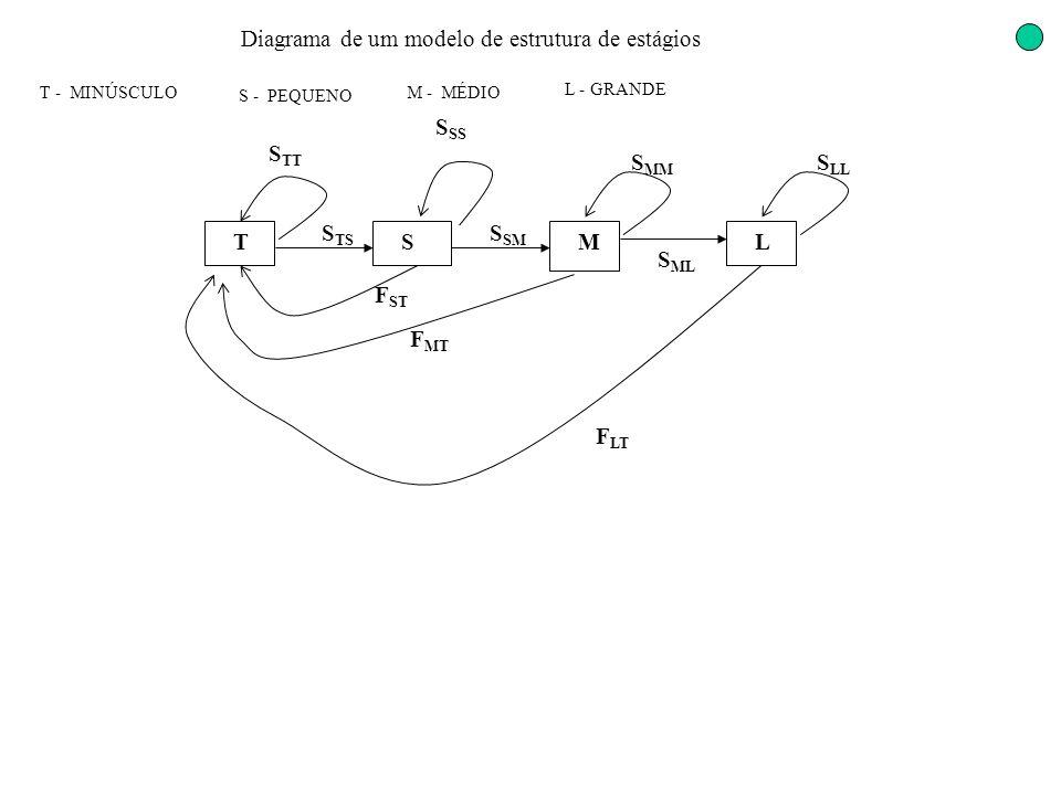Diagrama de um modelo de estrutura de estágios