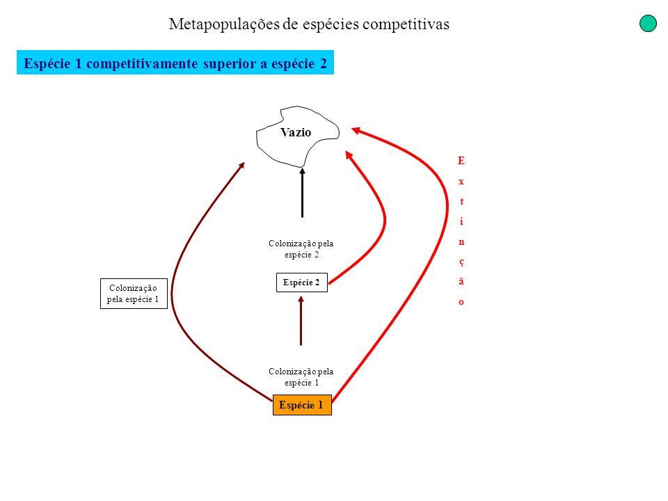 Espécie 1 competitivamente superior a espécie 2