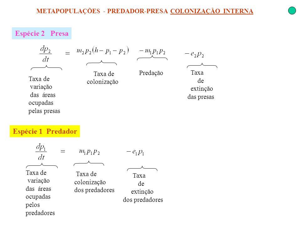 METAPOPULAÇÕES - PREDADOR-PRESA COLONIZAÇÃO INTERNA