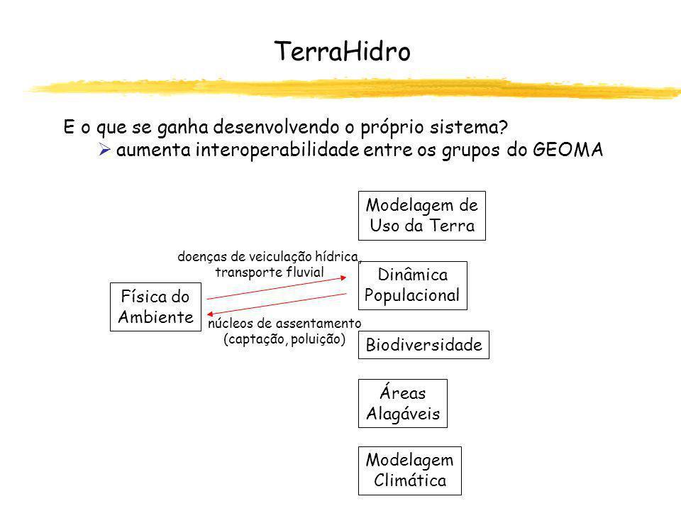 TerraHidro E o que se ganha desenvolvendo o próprio sistema