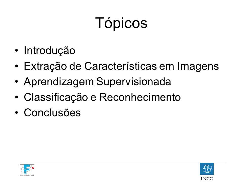 Tópicos Introdução Extração de Características em Imagens