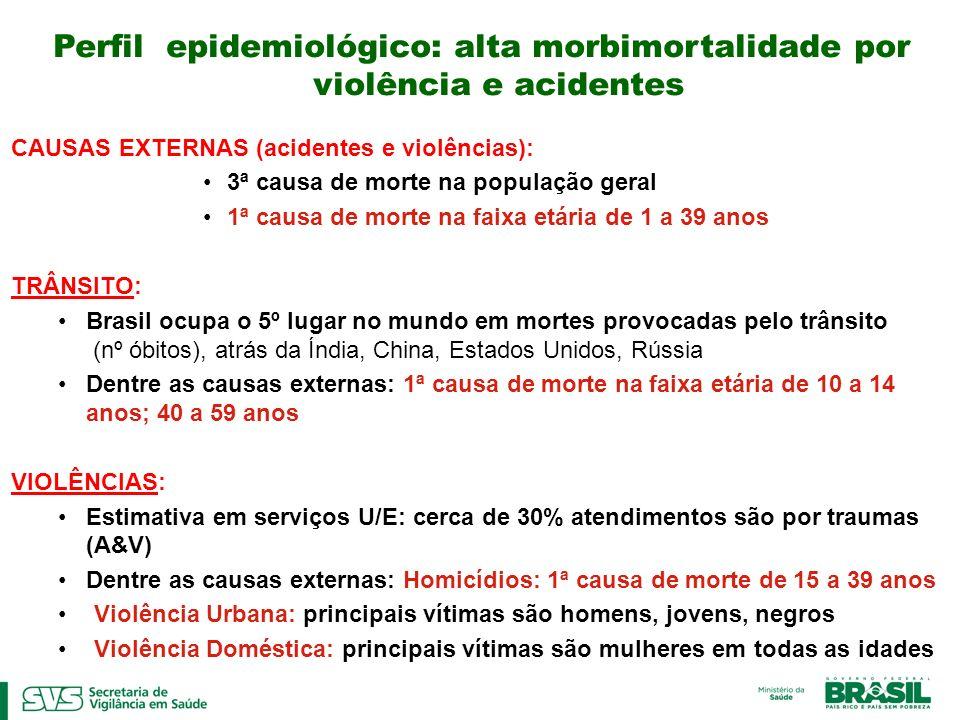 Perfil epidemiológico: alta morbimortalidade por violência e acidentes