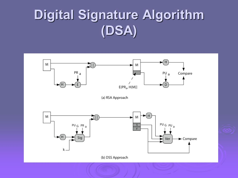Digital Signature Algorithm (DSA)
