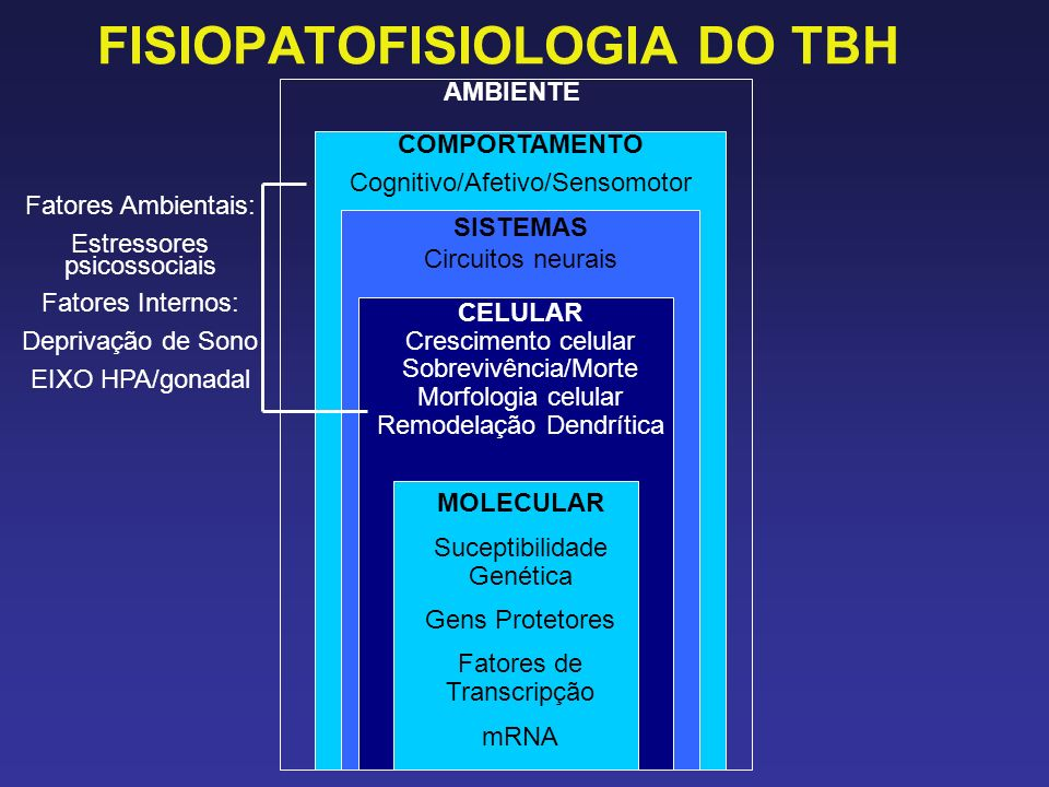 FISIOPATOFISIOLOGIA DO TBH