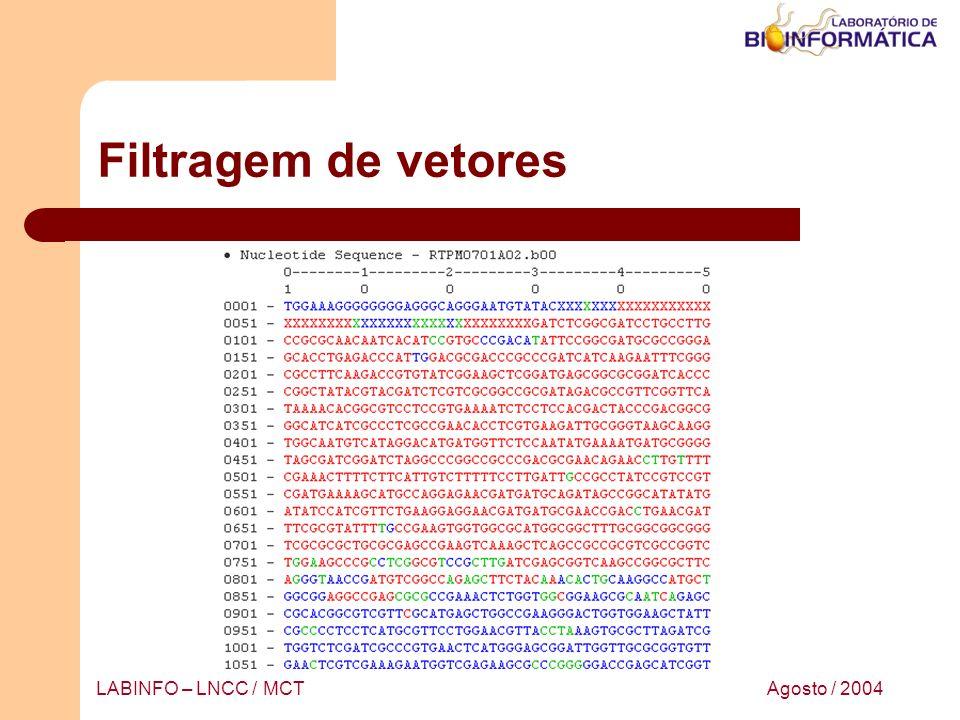 Filtragem de vetores LABINFO – LNCC / MCT Agosto / 2004