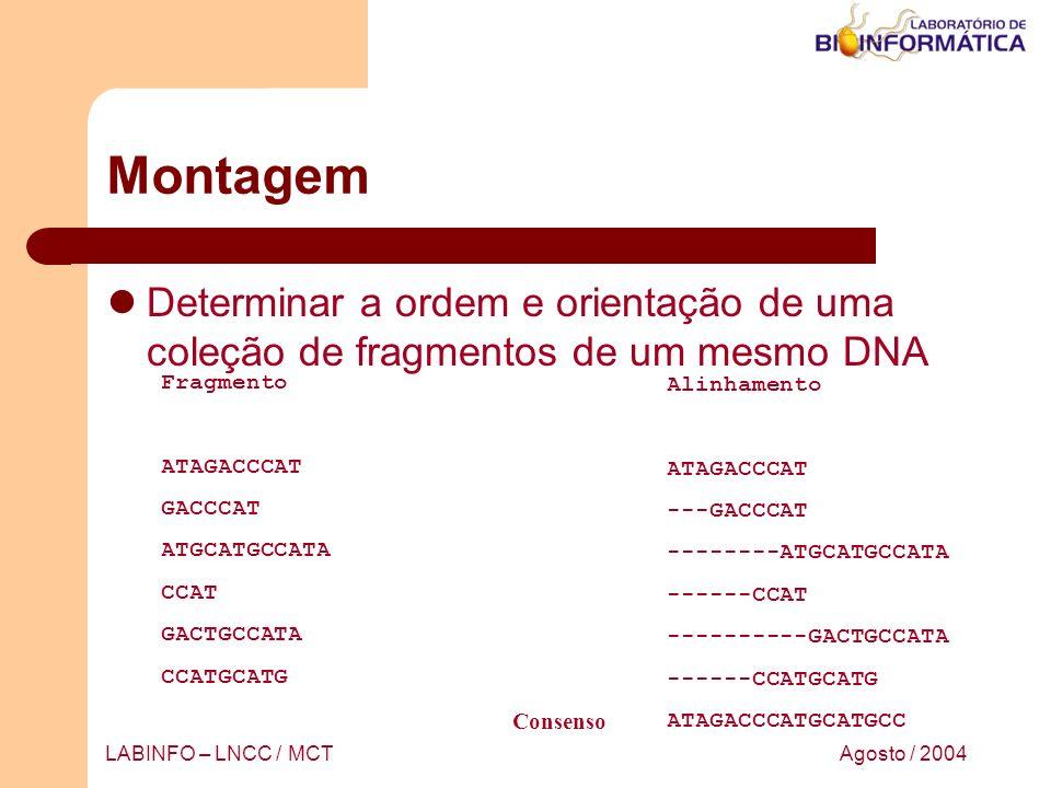 Montagem Determinar a ordem e orientação de uma coleção de fragmentos de um mesmo DNA. Fragmento. ATAGACCCAT.