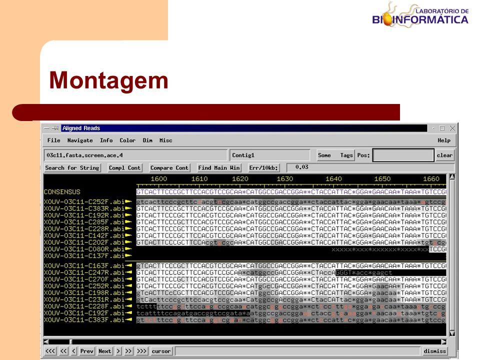 Montagem LABINFO – LNCC / MCT Agosto / 2004