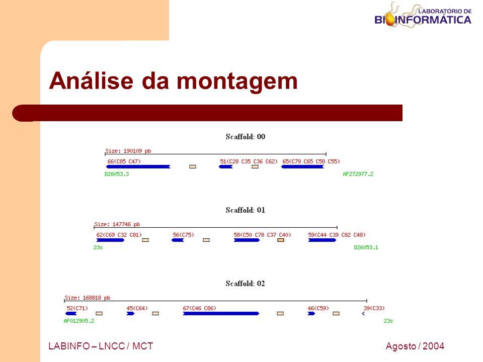Análise da montagem LABINFO – LNCC / MCT Agosto / 2004