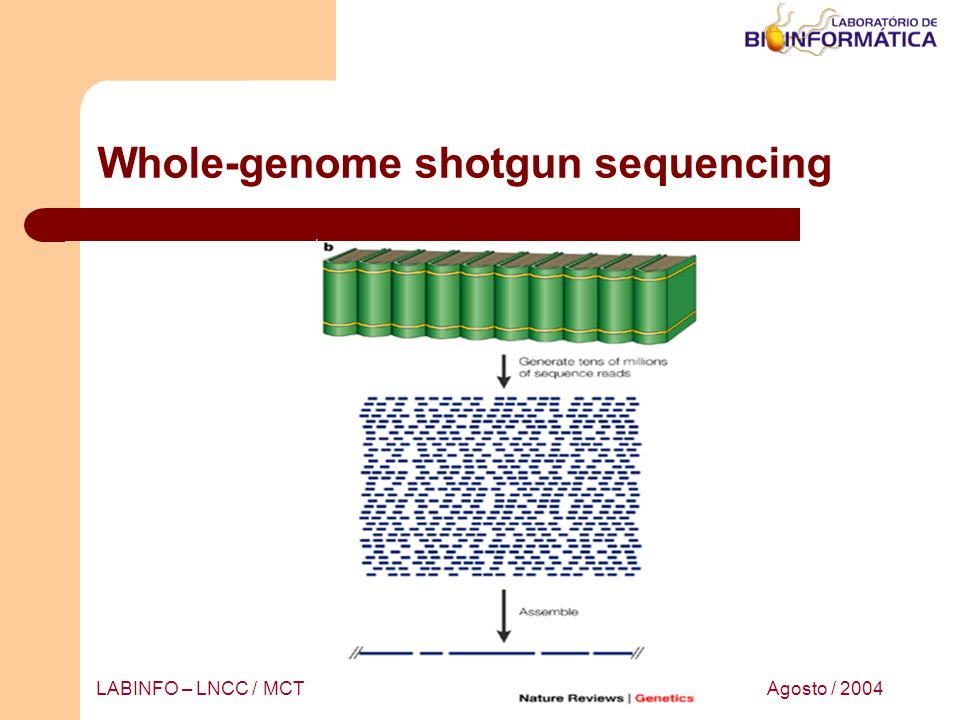 Whole-genome shotgun sequencing