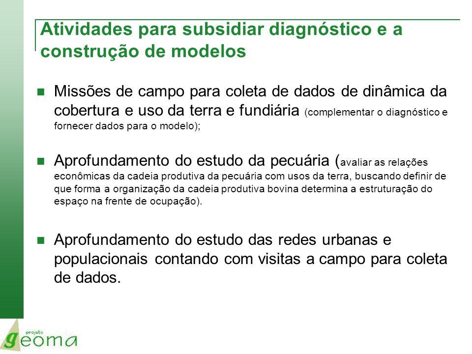 Atividades para subsidiar diagnóstico e a construção de modelos