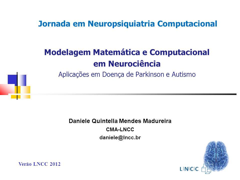 Jornada em Neuropsiquiatria Computacional
