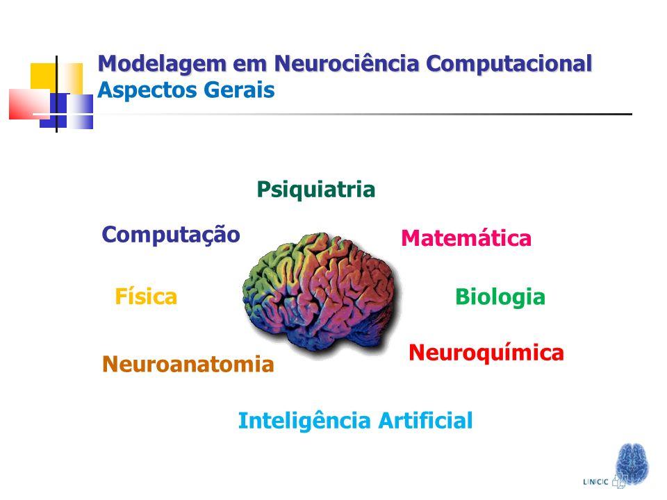 Modelagem em Neurociência Computacional Aspectos Gerais