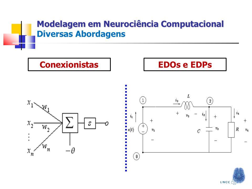 Modelagem em Neurociência Computacional Diversas Abordagens