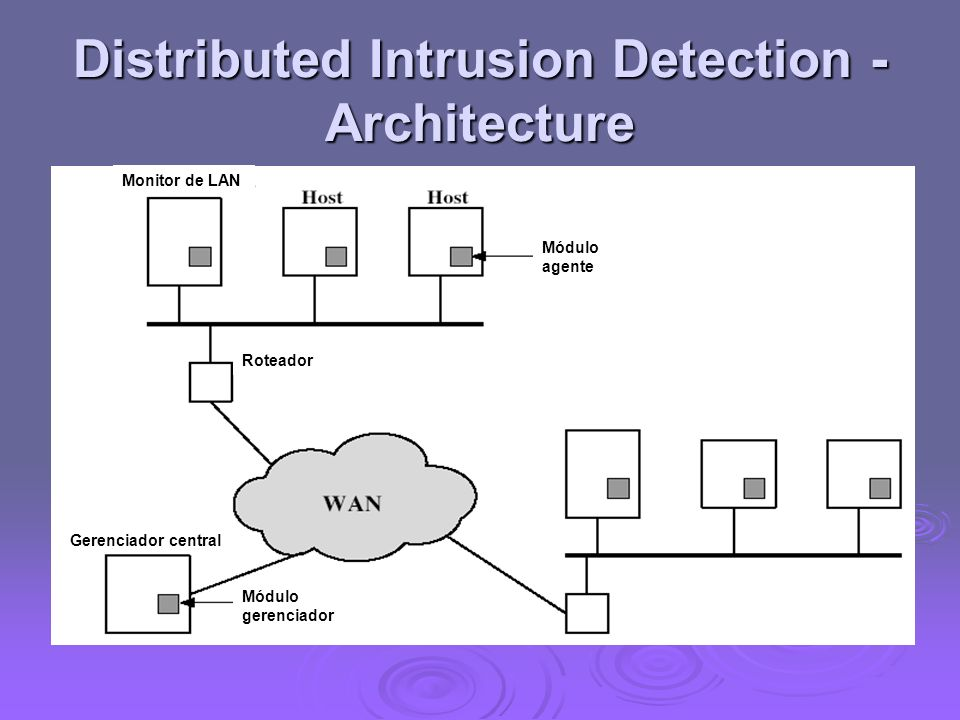 Distributed Intrusion Detection - Architecture