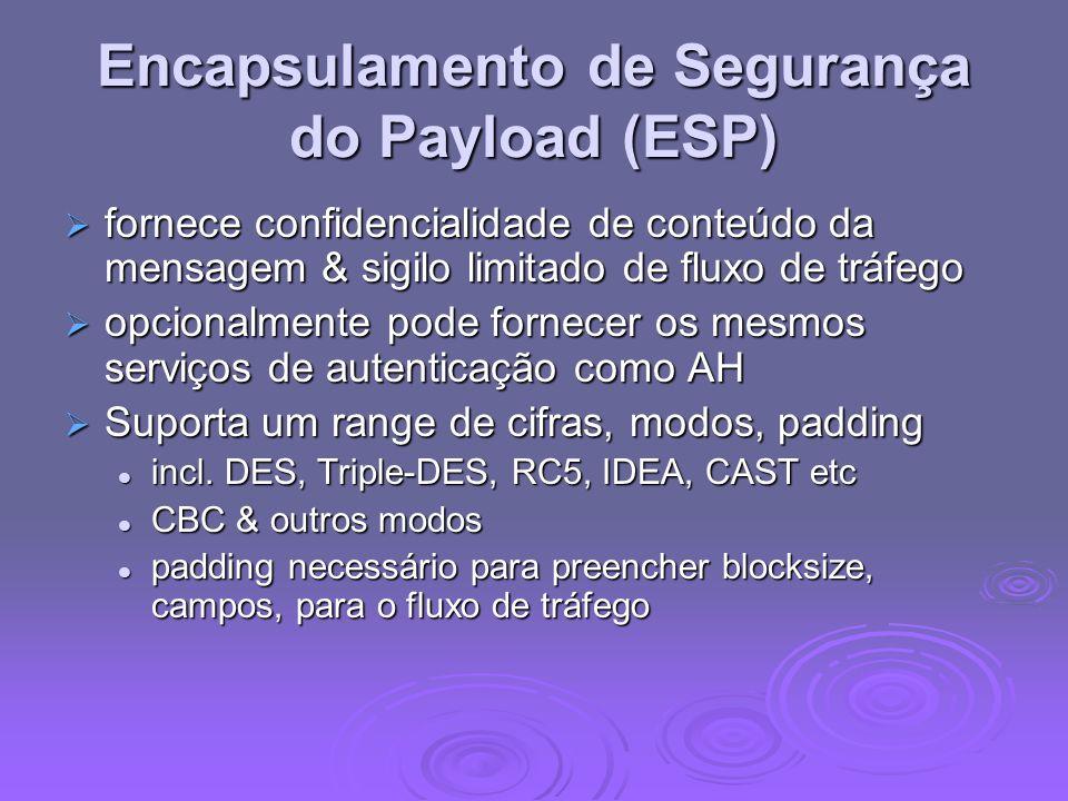Encapsulamento de Segurança do Payload (ESP)