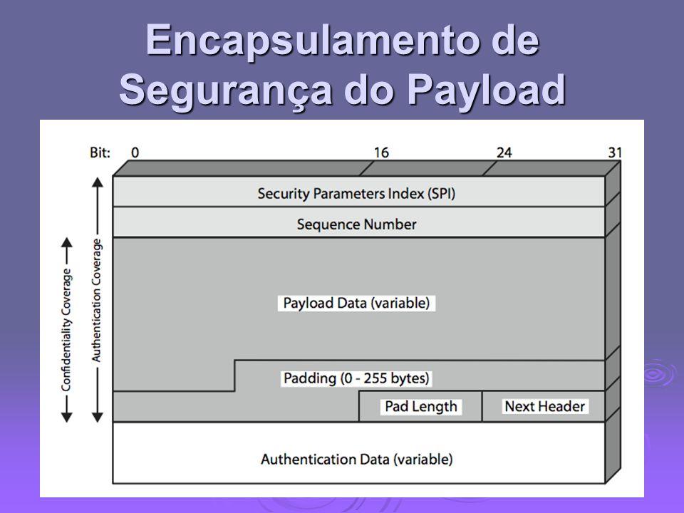 Encapsulamento de Segurança do Payload
