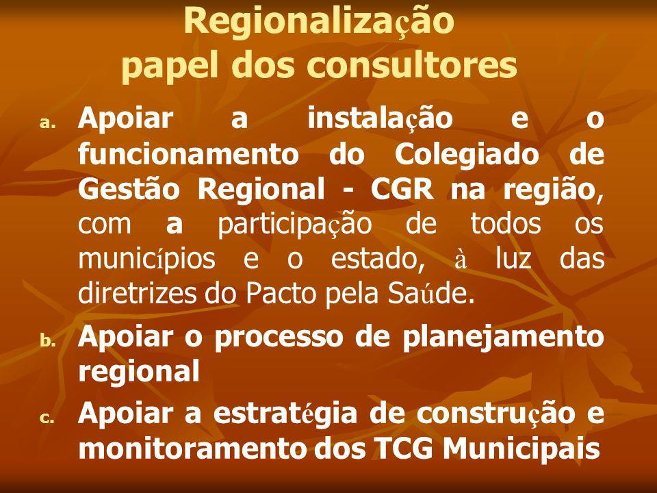 Regionalização papel dos consultores