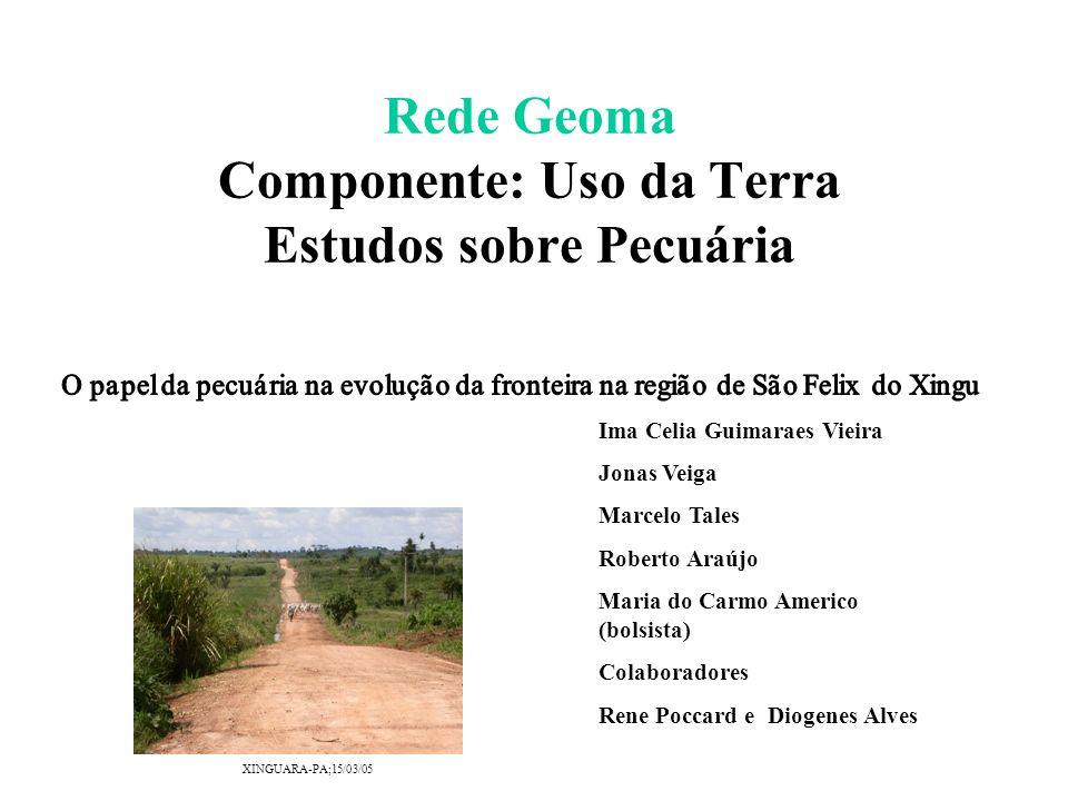 Rede Geoma Componente: Uso da Terra Estudos sobre Pecuária