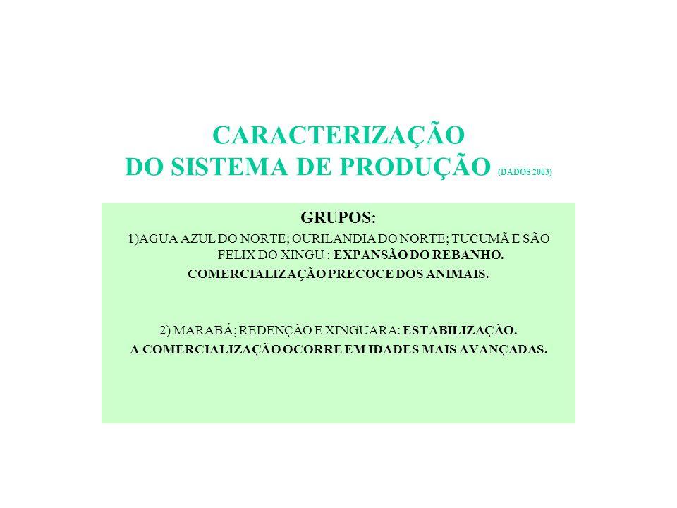 CARACTERIZAÇÃO DO SISTEMA DE PRODUÇÃO (DADOS 2003)