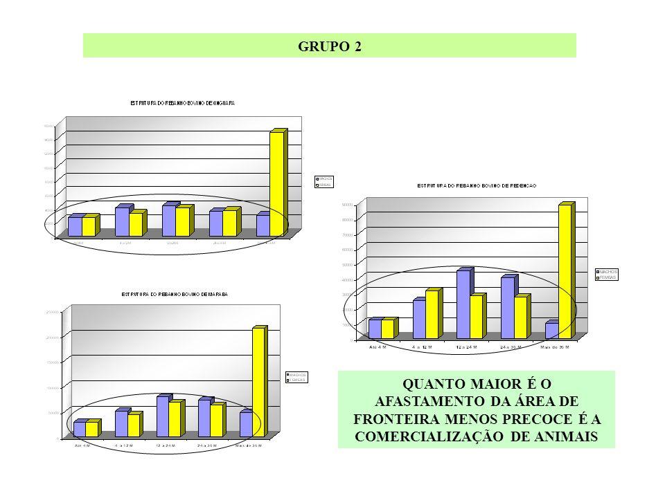 GRUPO 2 QUANTO MAIOR É O AFASTAMENTO DA ÁREA DE FRONTEIRA MENOS PRECOCE É A COMERCIALIZAÇÃO DE ANIMAIS.