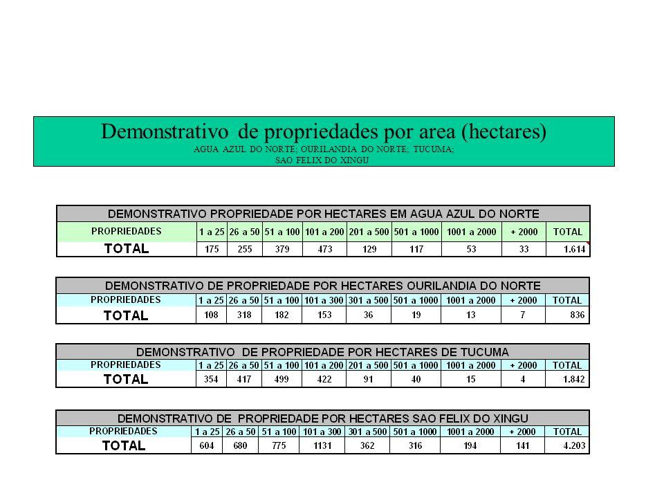 Demonstrativo de propriedades por area (hectares)