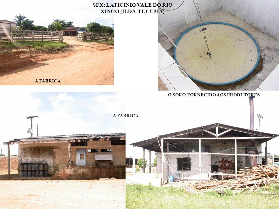 SFX: LATICINIO VALE DO RIO XINGO (ILDA-TUCUMA)