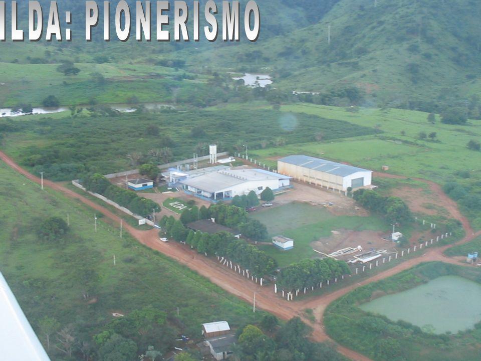 ILDA: PIONERISMO