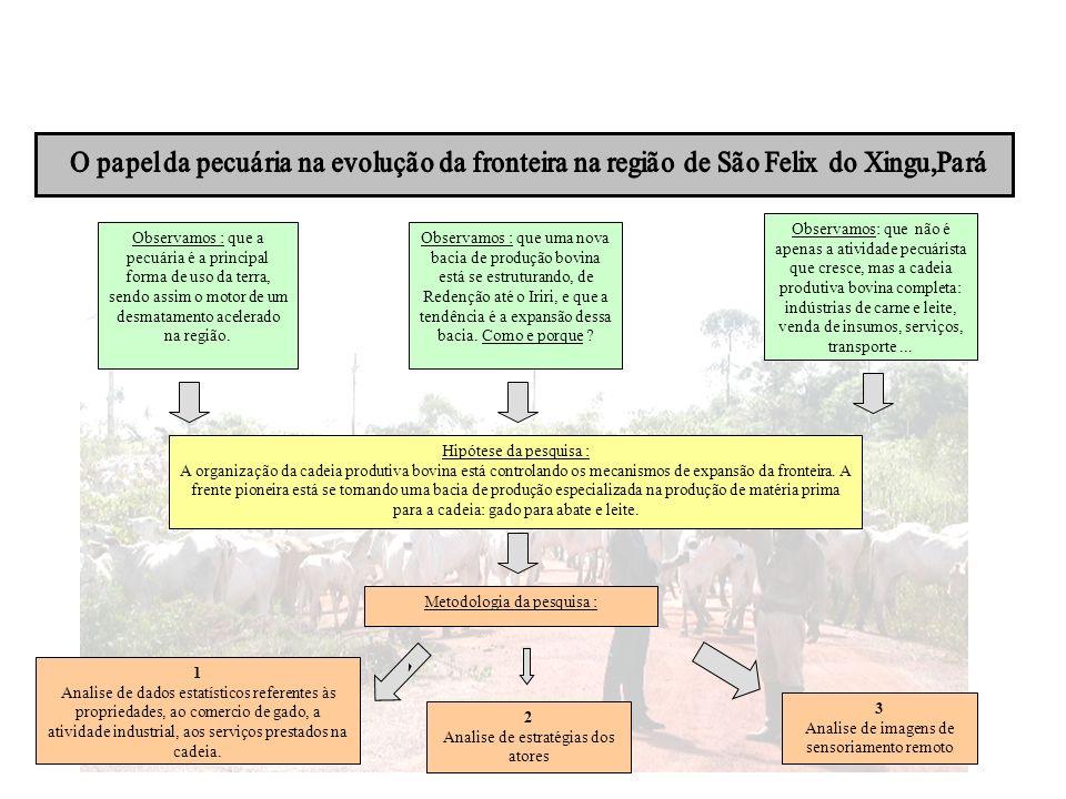 O papel da pecuária na evolução da fronteira na região de São Felix do Xingu,Pará