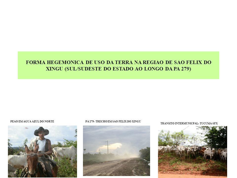 FORMA HEGEMONICA DE USO DA TERRA NA REGIAO DE SAO FELIX DO XINGU (SUL/SUDESTE DO ESTADO AO LONGO DA PA 279)