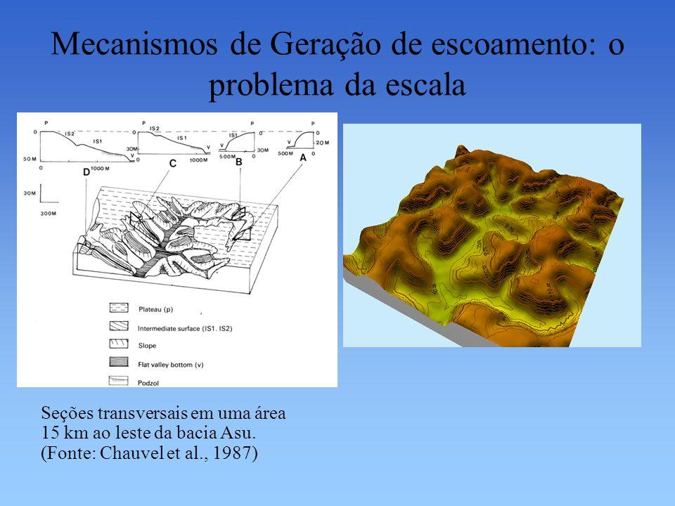 Mecanismos de Geração de escoamento: o problema da escala