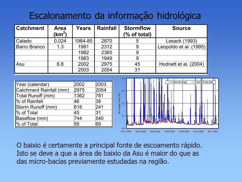 Escalonamento da informação hidrológica