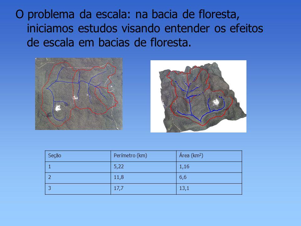 O problema da escala: na bacia de floresta, iniciamos estudos visando entender os efeitos de escala em bacias de floresta.